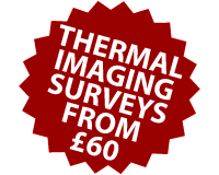 Thermal imaging surveys from £60